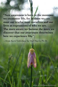 """New awareness is born in the moments we encounter life, for in them we can meet our truths, meet ourselves and our lives as expressions of who we are. The more aware we become the more we discover that our awareness determines how we experience life."" —from Sacred Selfishness by Bud Harris Ph.D."