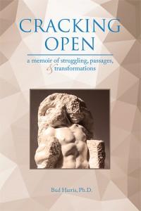 Cracking Open, a Jungian analyst's memoir
